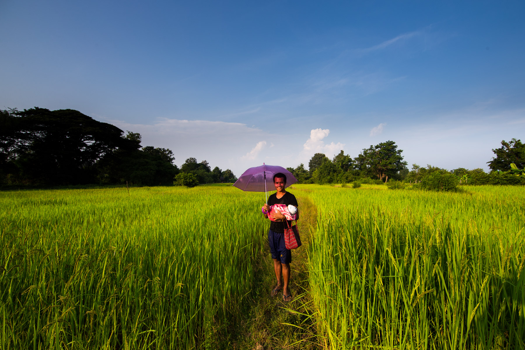 Father and child in rice field